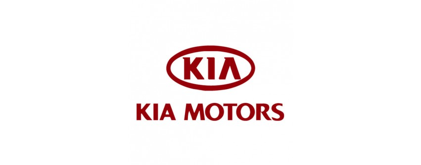 Kit Turbo KIA MOTORS