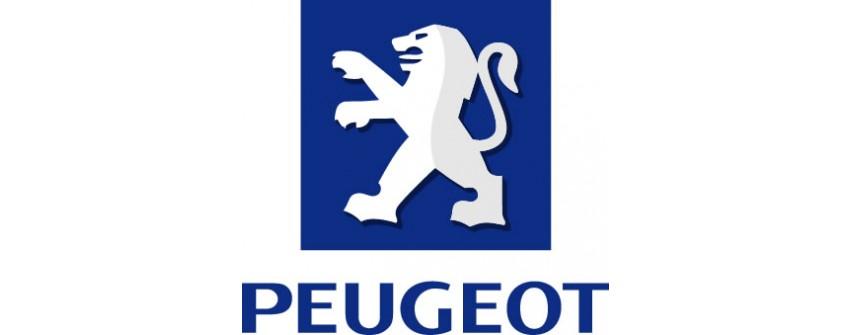 Kit Turbo Peugeot